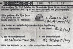 Abb. 116 Karten zur Umfrage des Atlasses der Deutschen Volkskunde (ADV), 1933 (Volkskundliches Institut der Universität Bonn)